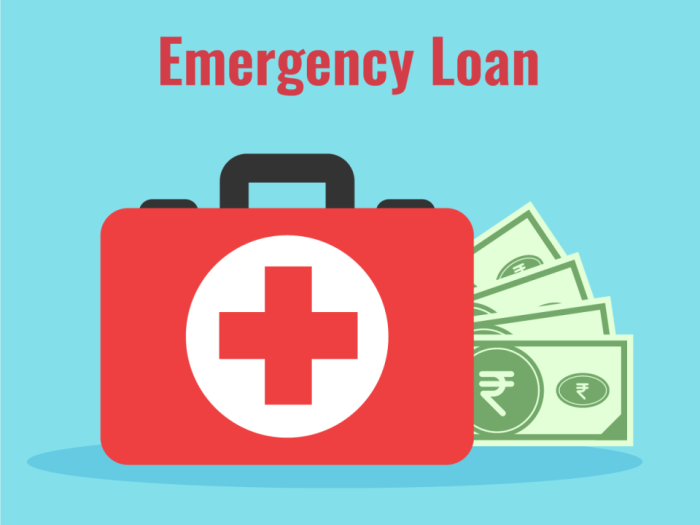 Small Business Emergency Loan Fund